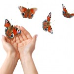 butterfly_hands